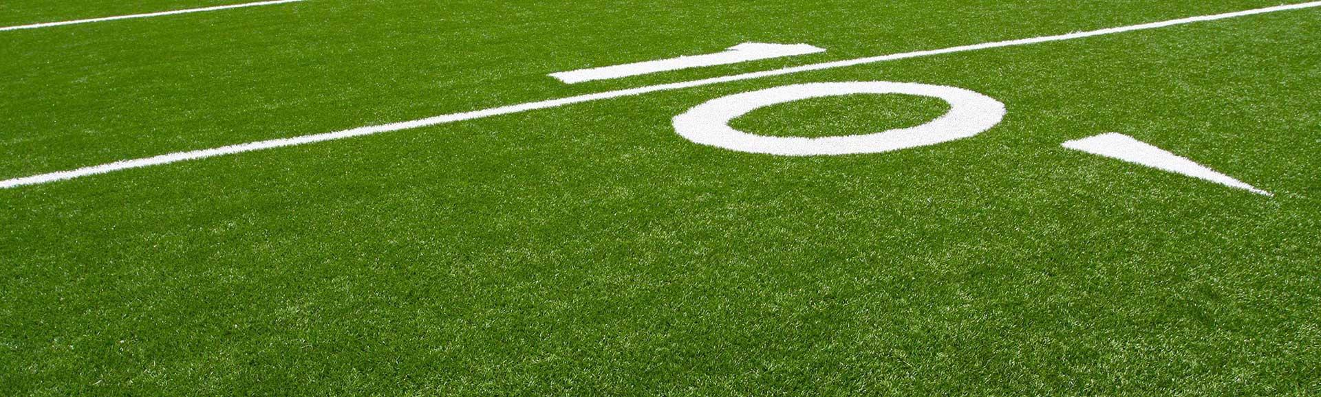 Artificial Grass Dallas TX